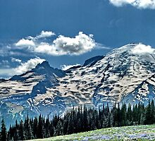 Mt Rainier Summer Panoramic by AnselP