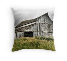 Barn, Urbandale Iowa Throw Pillow