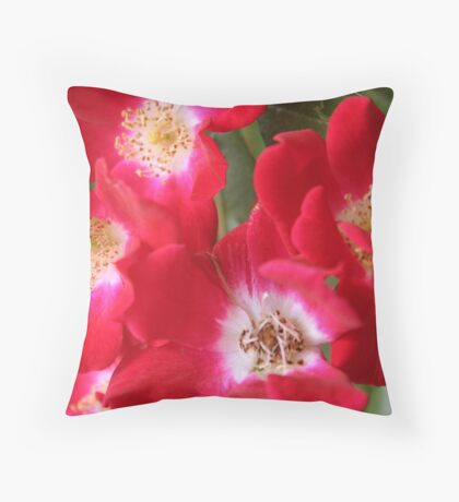 Wild Red Roses Throw Pillow