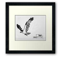 Osprey in Flight Framed Print