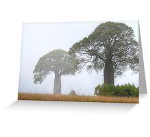 Boabs in the Mist - Boondooma, Queensland, Australia Greeting Card