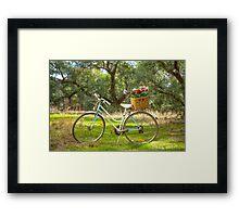 Lovely La Belle By Malvern Star..... Framed Print