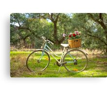 Lovely La Belle By Malvern Star..... Canvas Print