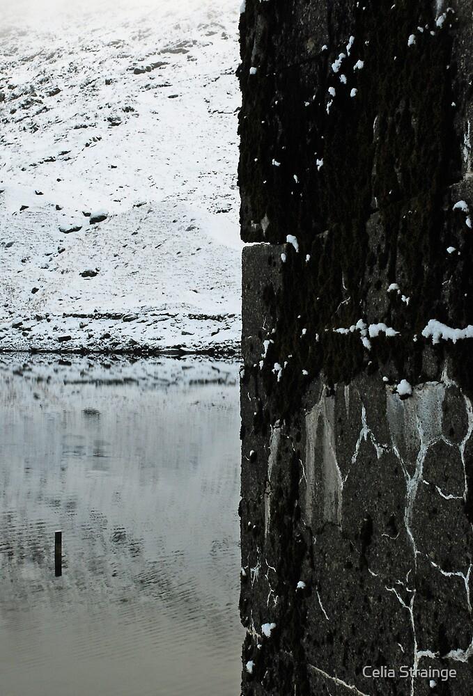 Quarters, base of snowdon by Celia Strainge