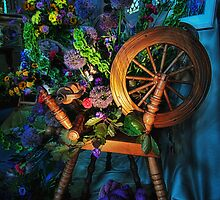Spinning Wheel by Alan E Taylor