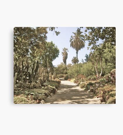 Untitled, California Canvas Print