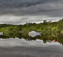Boats of Loch Ness by Claire Walsh