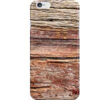 Desertland iPhone Case/Skin