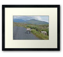 picture postcard Ireland? Framed Print