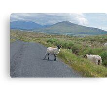 picture postcard Ireland? Canvas Print