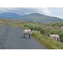 picture postcard Ireland? Photographic Print
