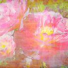 Lovely Tulips. by Vitta
