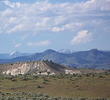 Denny Flat View of the Elkhorns - Eastern Oregon  by BettyEDuncan