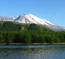 Coldwater Lake and Mt. St. Helens by AnselP
