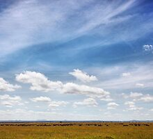 Under African Skies II by BlaizerB