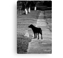 OnePhotoPerDay Series: 194 by L. Canvas Print
