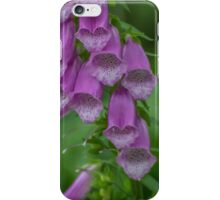 Beautiful Purple Flowers iPhone Case/Skin