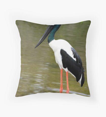 Jabiru - black necked stork Throw Pillow