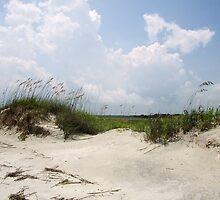 Sand Dune by Paulette1021