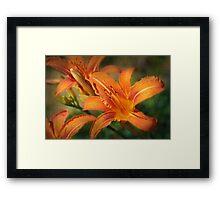 La Naranja Framed Print