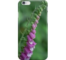 Beautiful Purple and Green Flowers iPhone Case/Skin