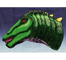 Apatosaurus louisea Photographic Print
