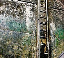 Ladder by oxymoronic92