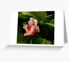 Pretty Plant Greeting Card