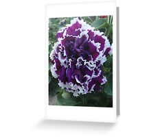 Prettily Purple & White Greeting Card