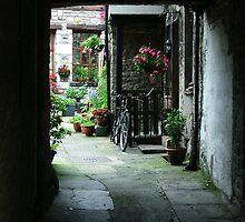 Peeking In - Kirkby Lonsdale, Cumbria, England by ArtsGirl2
