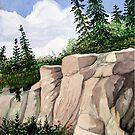 Hawkweed along the rock cut by loralea