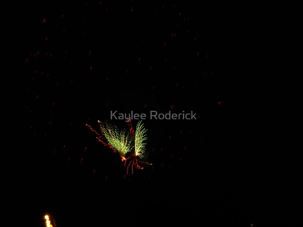 butterfly in the sky by kaylee roderick