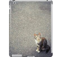 Cute little cat iPad Case/Skin