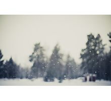 Falling snow Photographic Print