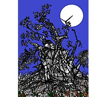 Full Moon in Fairyland Photographic Print
