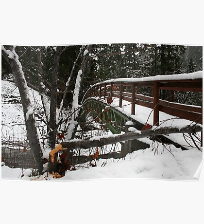 Snowy Trail - Wolf Creek Falls Poster