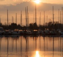 Of Yachts and Cormorants - A Golden Marina Morning Sticker