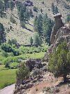 Eastern Oregon - Hwy 245 Balancing Rock by BettyEDuncan