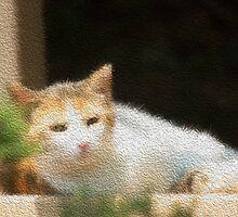 Gato by EugeJ