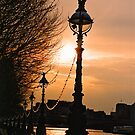 South Bank Along The River Thames. London, England by Ralph de Zilva