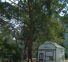 Small House by Marie Watt