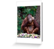 Orang utan breakfast Greeting Card