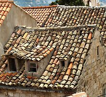 The Old Pantiled Roofs of Dubrovnic Croatia by saxonfenken