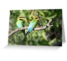 Rainbow Bee-eaters X 2 Greeting Card