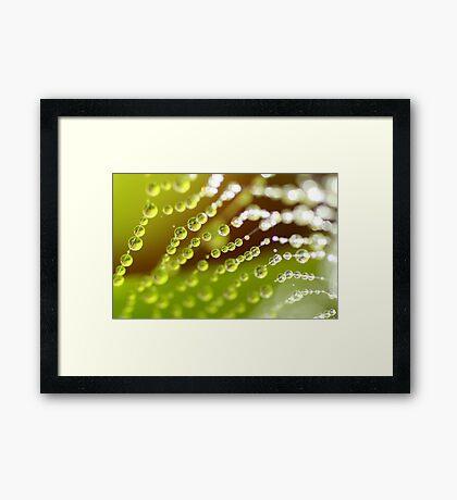 Glistening Green Drops Framed Print