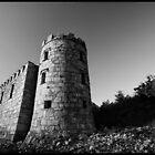 Stone by Robert Karreman