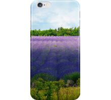Summertime Lavender iPhone Case/Skin