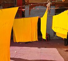 Dyer's Compound by Yashdeepsharma