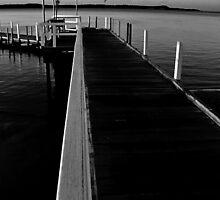 sunrise, winter. inverloch jetty, victoria by tim buckley   bodhiimages