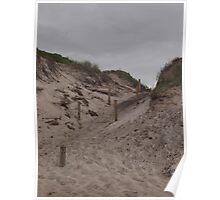Dune Access Poster